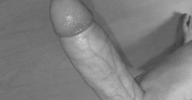 bite en noir et blanc
